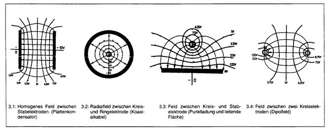 Elektrische Feldlinienverläufe und ihre Äquipotentialflächen.