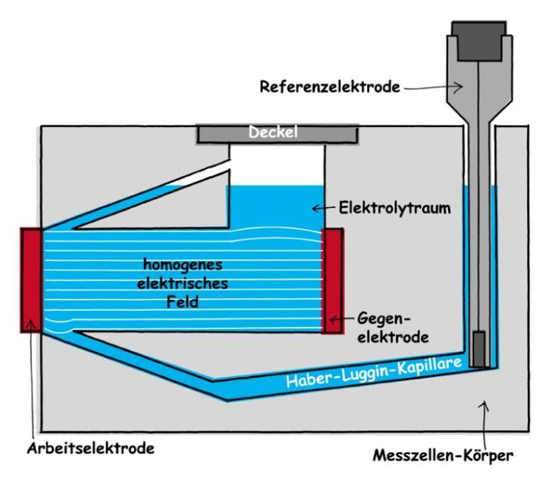 Homogenes-elektrische-Feld-in-der-Messzelle-FlexCell.