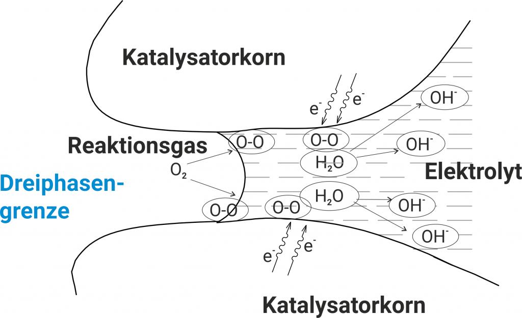 Dreiphasengrenze einer Gasdiffusionselektrode