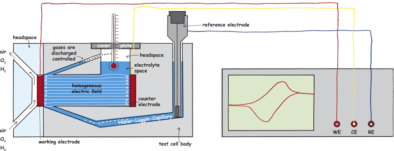 Test cell and potentiostat